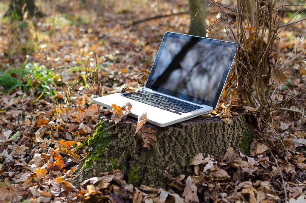 bonheur moment nature forêt ordinateur laptop bien-être